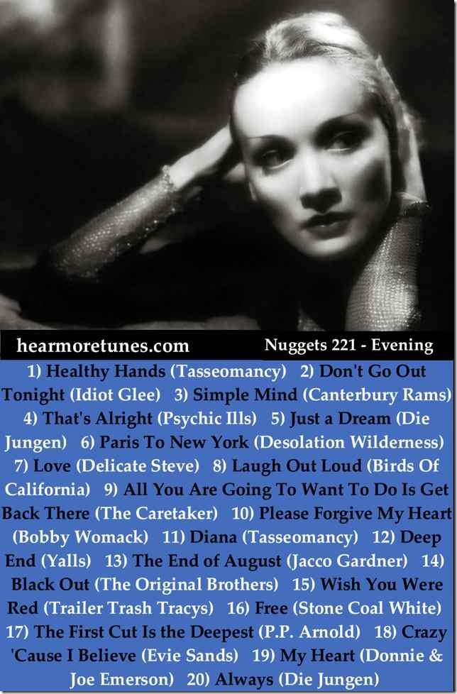 Nuggets 221 - Evening web